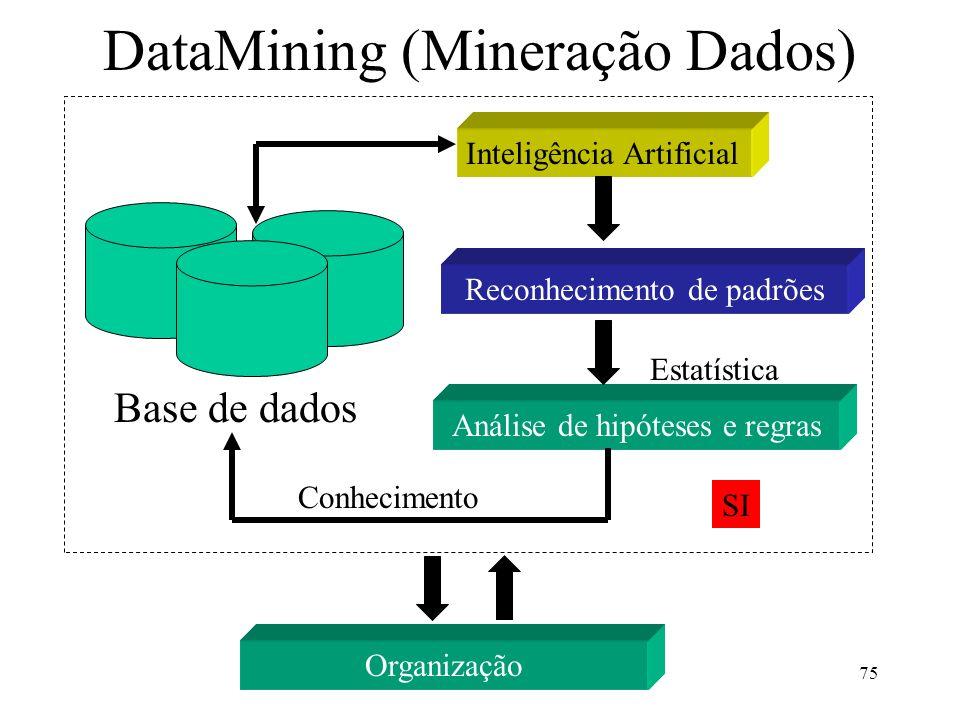 DataMining (Mineração Dados)