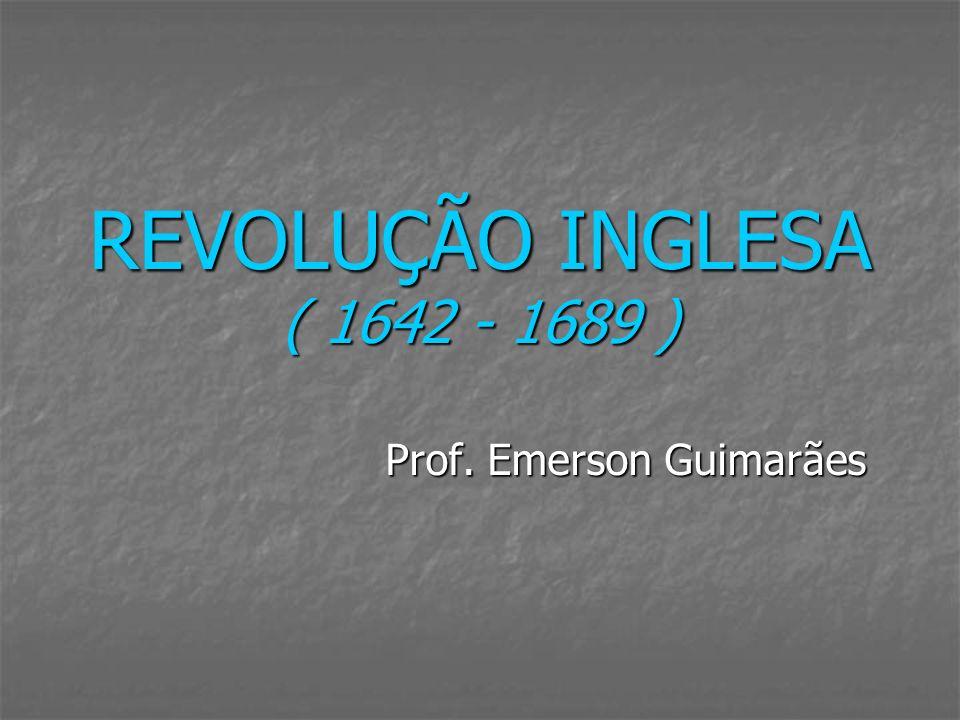 Prof. Emerson Guimarães