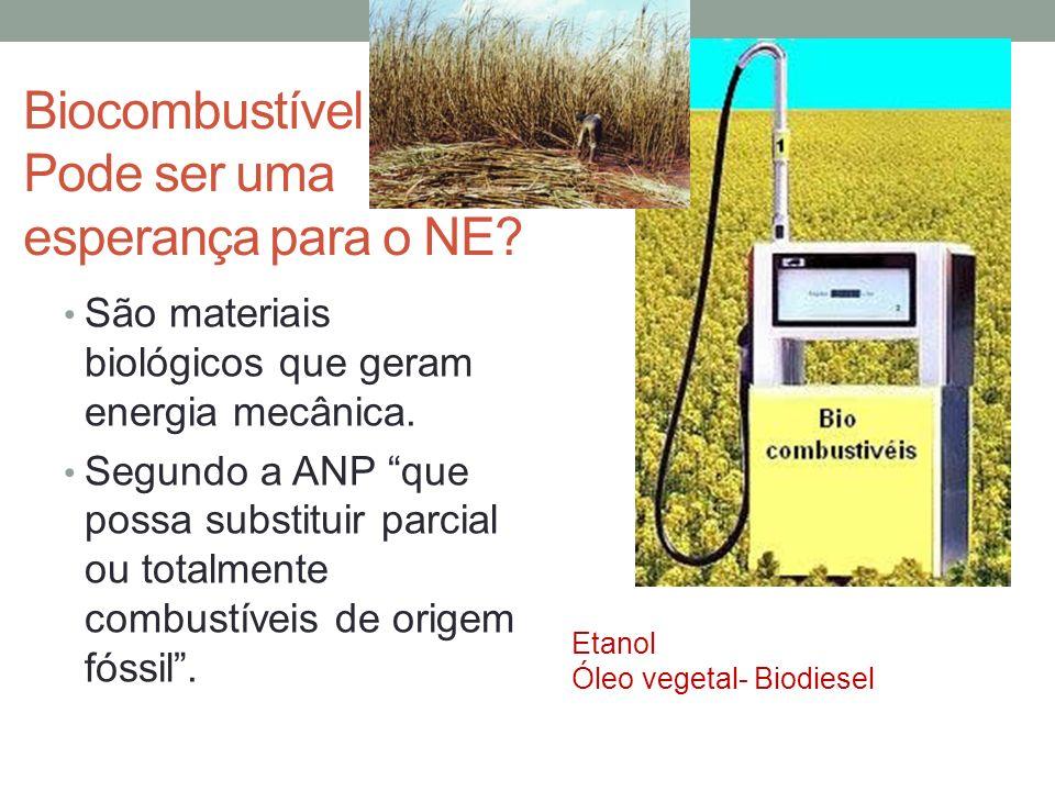 Biocombustível Pode ser uma esperança para o NE