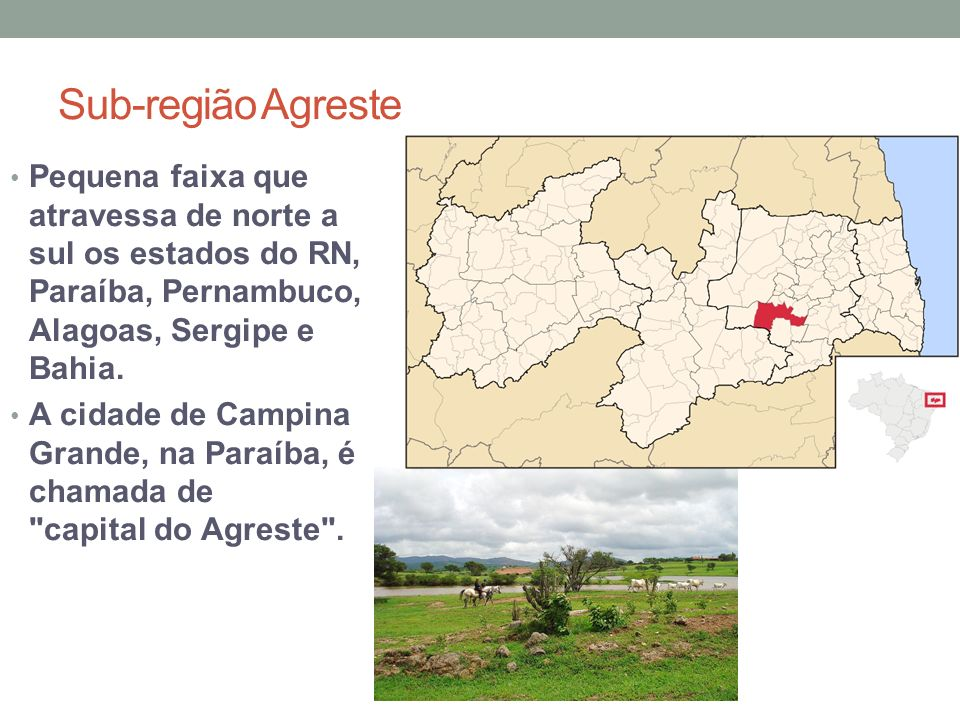 Sub-região Agreste Pequena faixa que atravessa de norte a sul os estados do RN, Paraíba, Pernambuco, Alagoas, Sergipe e Bahia.