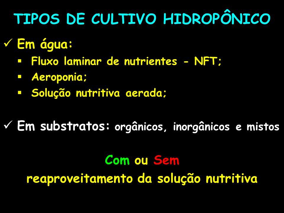 TIPOS DE CULTIVO HIDROPÔNICO