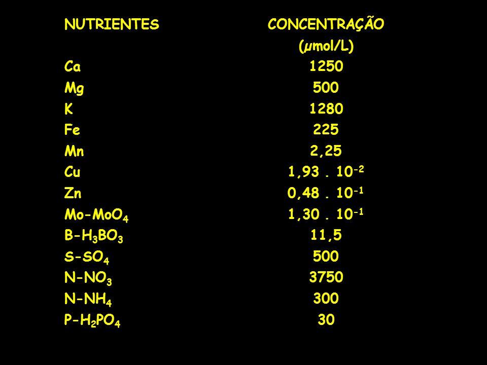 NUTRIENTES CONCENTRAÇÃO. (µmol/L) Ca. 1250. Mg. 500. K. 1280. Fe. 225. Mn. 2,25. Cu. 1,93 . 10-2.