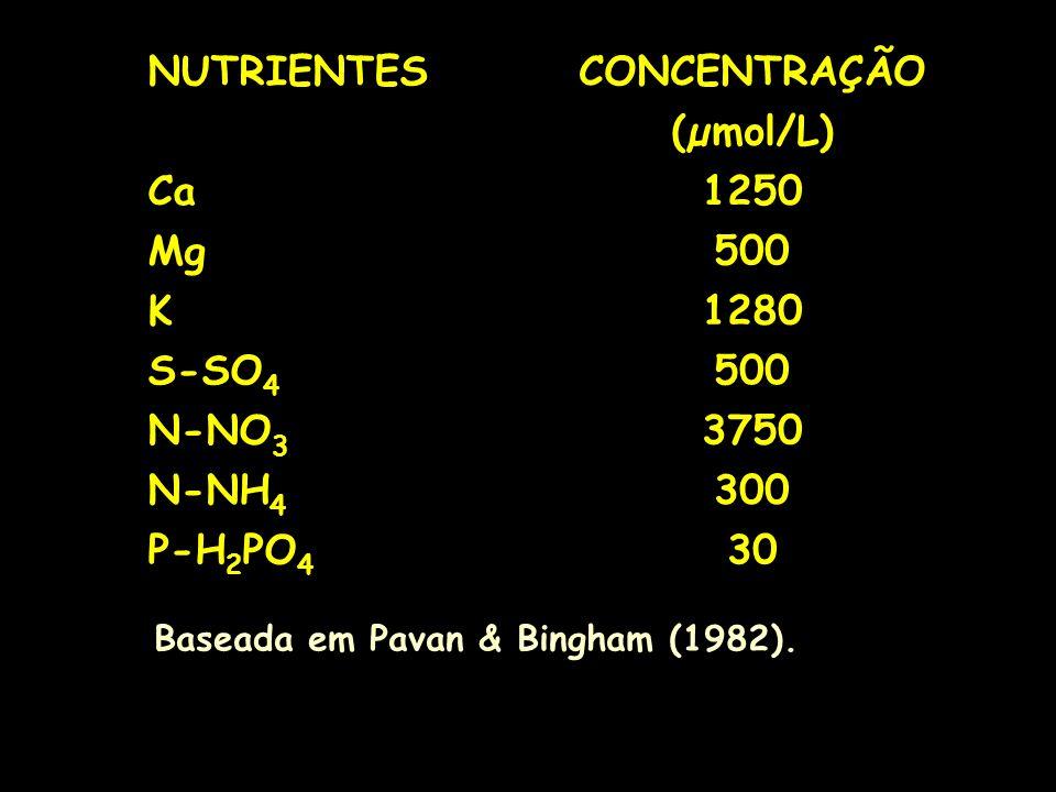 CONCENTRAÇÃO (µmol/L) 1250 500 1280 3750 300 30