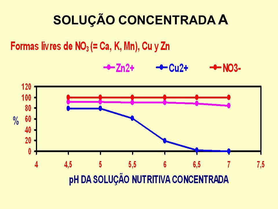 SOLUÇÃO CONCENTRADA A