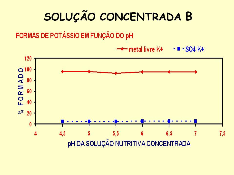 SOLUÇÃO CONCENTRADA B