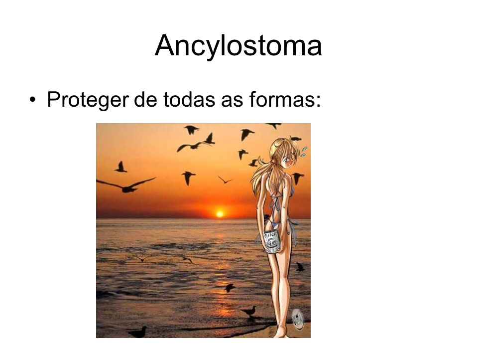 Ancylostoma Proteger de todas as formas: