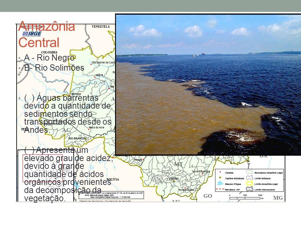 Amazônia Central A - Rio Negro B- Rio Solimões