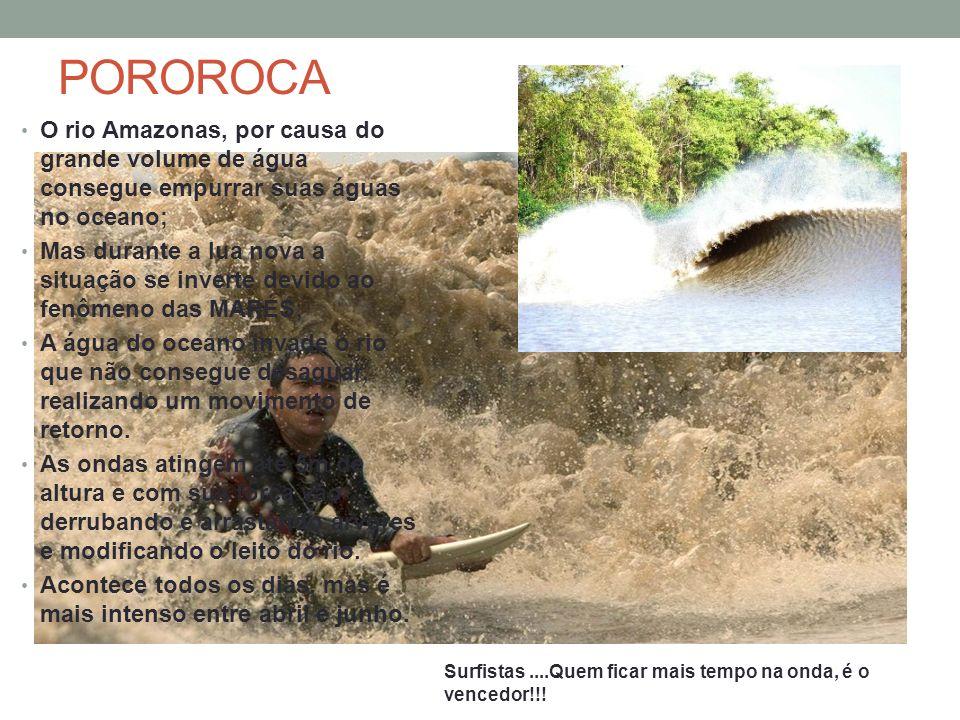 POROROCA O rio Amazonas, por causa do grande volume de água consegue empurrar suas águas no oceano;