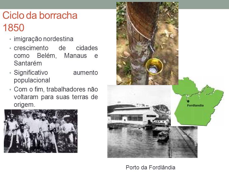 Ciclo da borracha 1850 imigração nordestina