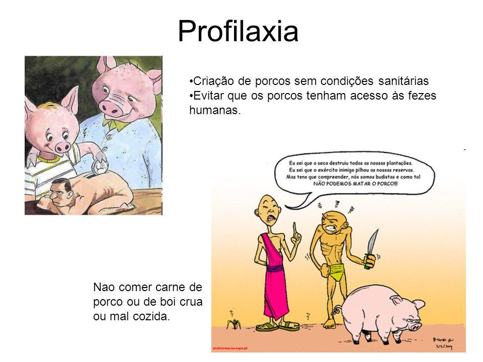 Profilaxia Criação de porcos sem condições sanitárias