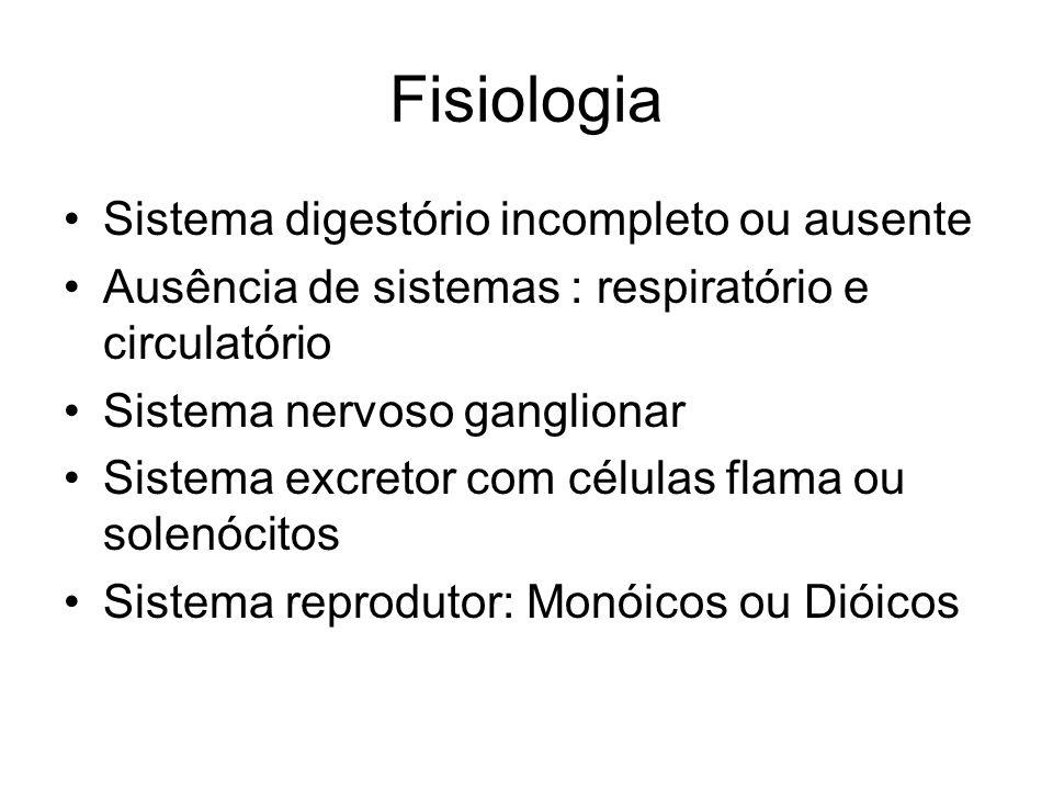 Fisiologia Sistema digestório incompleto ou ausente