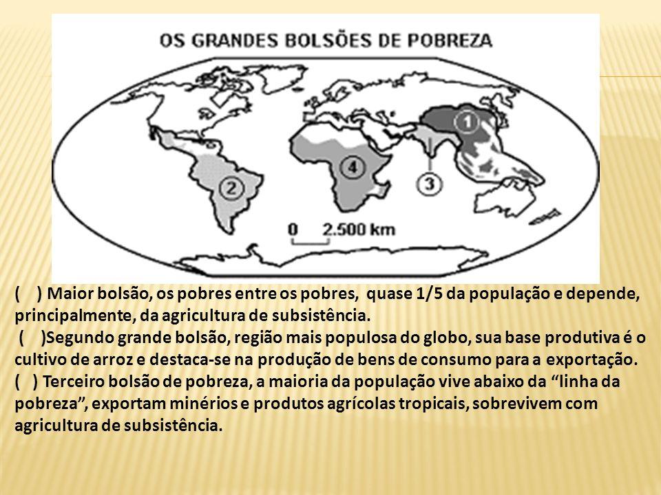 ( ) Maior bolsão, os pobres entre os pobres, quase 1/5 da população e depende, principalmente, da agricultura de subsistência.