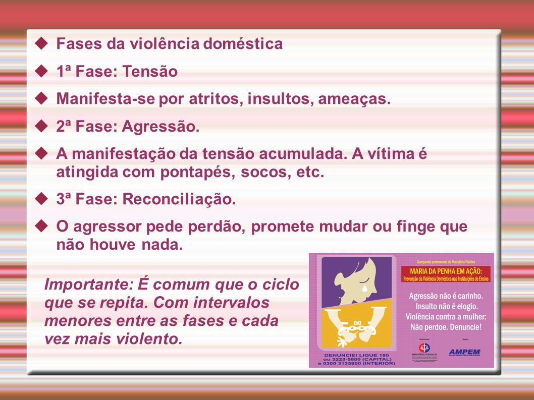Fases da violência doméstica