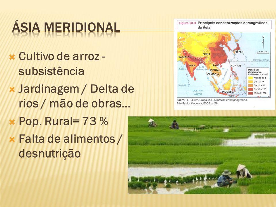ÁSia Meridional Cultivo de arroz - subsistência