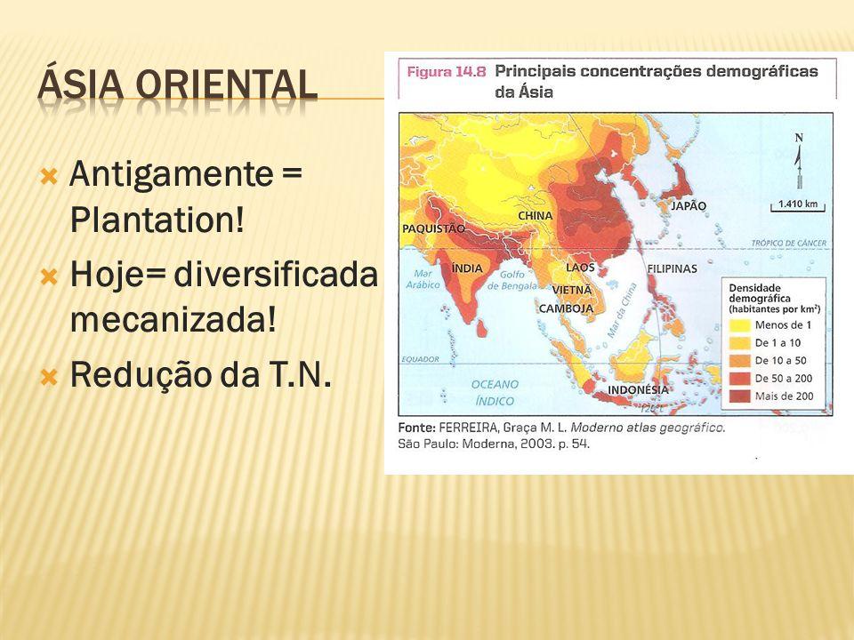 Ásia oriental Antigamente = Plantation!