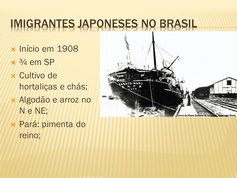 IMIGRANTES japoneses no BRASIL