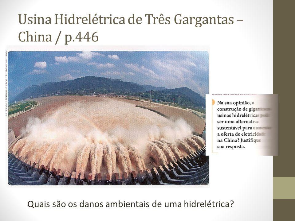 Usina Hidrelétrica de Três Gargantas – China / p.446