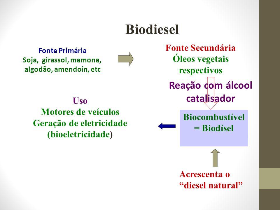 Óleos vegetais respectivos Geração de eletricidade (bioeletricidade)