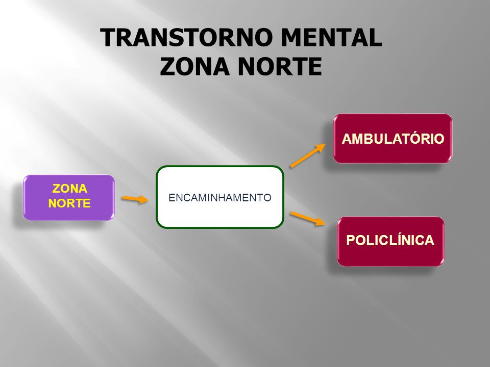 TRANSTORNO MENTAL ZONA NORTE