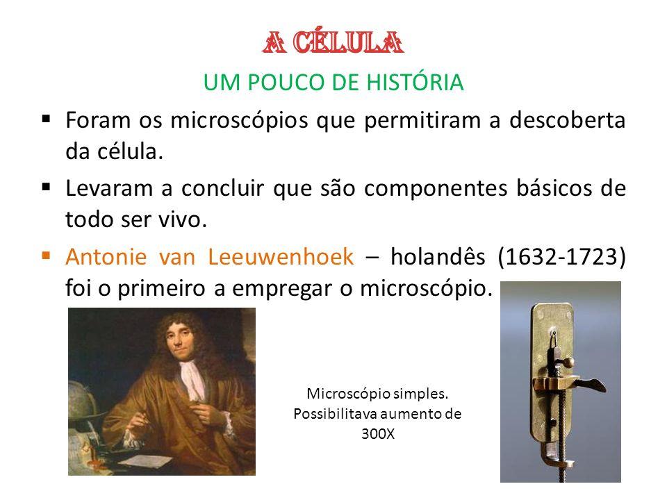 Microscópio simples. Possibilitava aumento de 300X