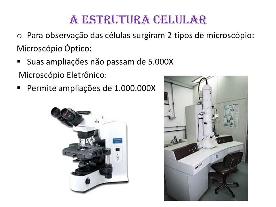 A ESTRUTURA CELULAR Para observação das células surgiram 2 tipos de microscópio: Microscópio Óptico: