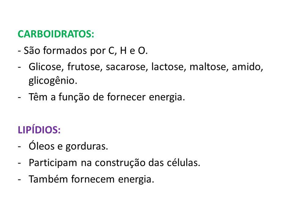 CARBOIDRATOS: - São formados por C, H e O. Glicose, frutose, sacarose, lactose, maltose, amido, glicogênio.