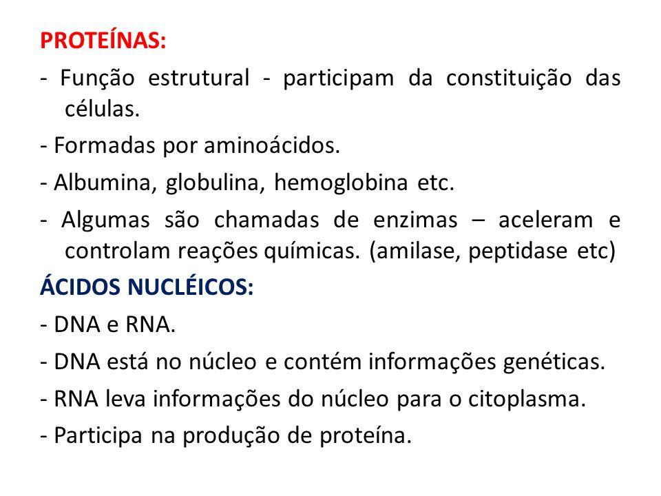 PROTEÍNAS: - Função estrutural - participam da constituição das células.