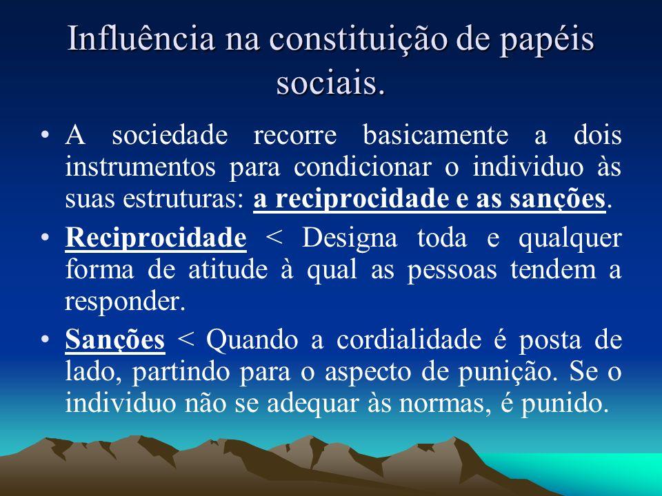Influência na constituição de papéis sociais.