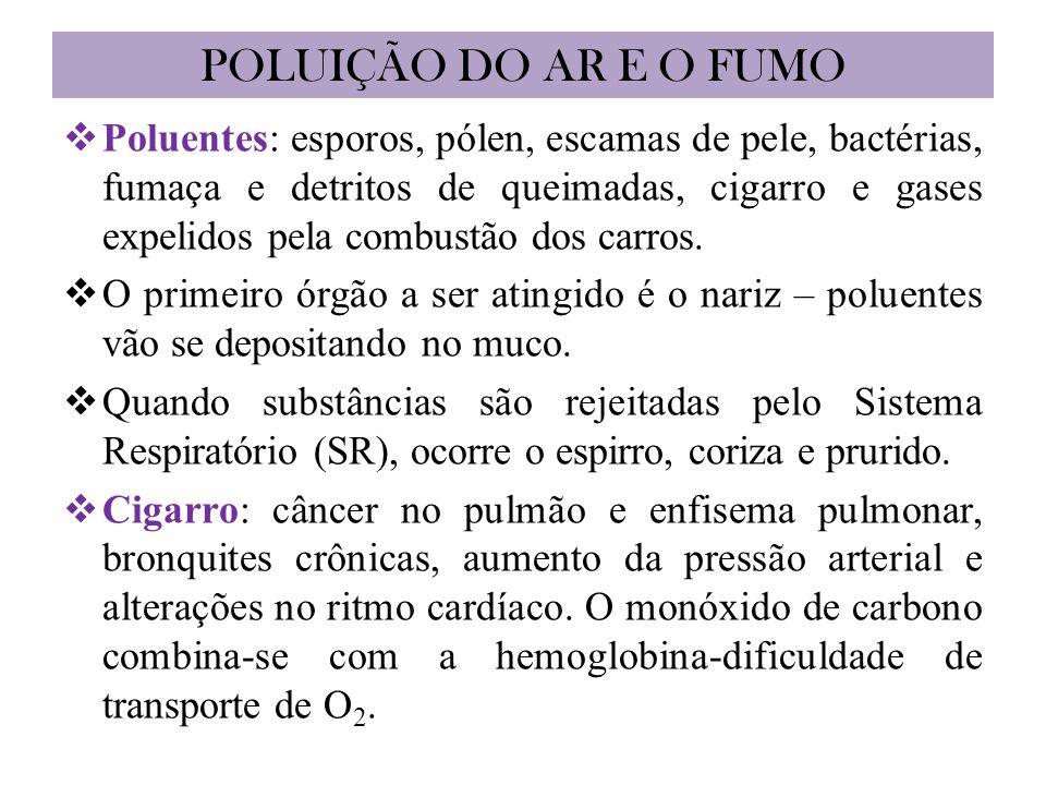 POLUIÇÃO DO AR E O FUMO