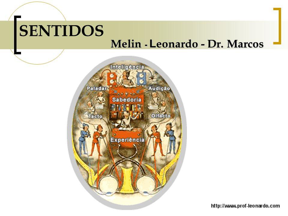 SENTIDOS Melin - Leonardo - Dr. Marcos