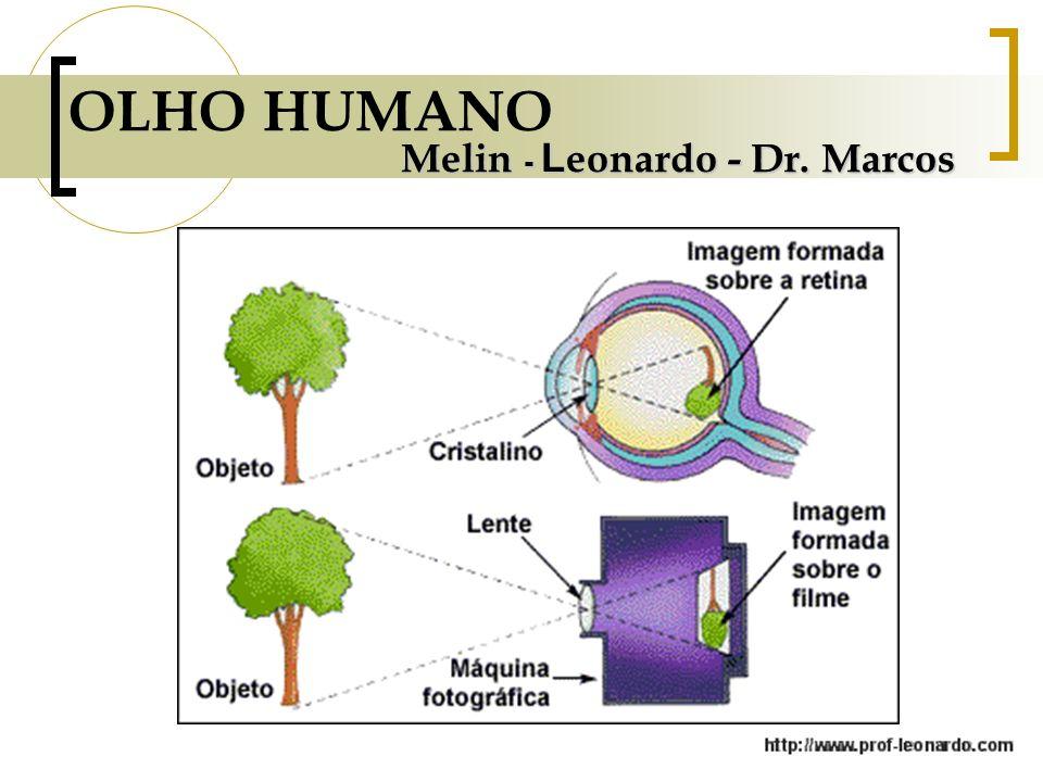 OLHO HUMANO Melin - Leonardo - Dr. Marcos
