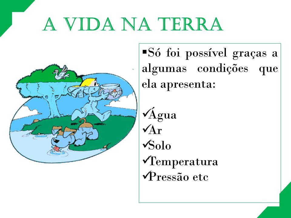 A VIDA NA TERRA Só foi possível graças a algumas condições que ela apresenta: Água. Ar. Solo. Temperatura.