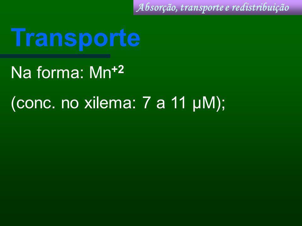 Transporte Na forma: Mn+2 (conc. no xilema: 7 a 11 µM);