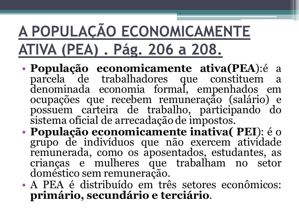 A POPULAÇÃO ECONOMICAMENTE ATIVA (PEA) . Pág. 206 a 208.