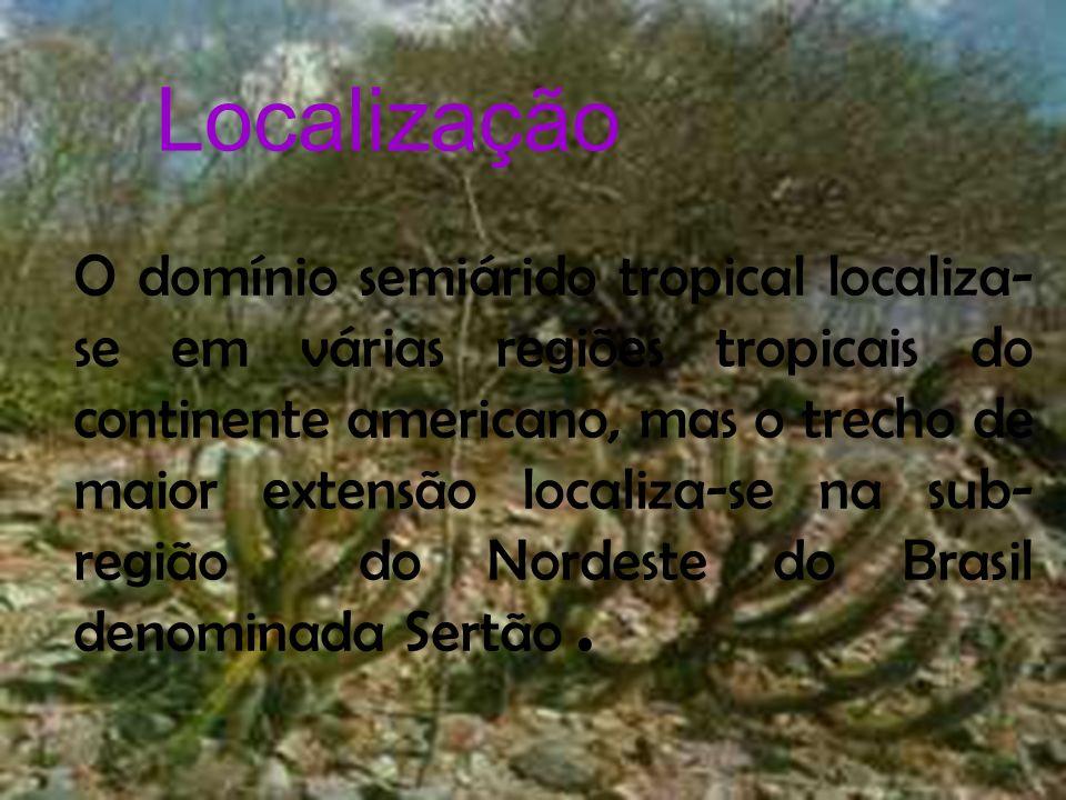 Localização Localização