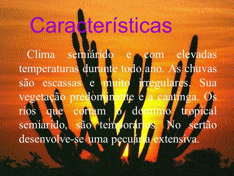 Características Características