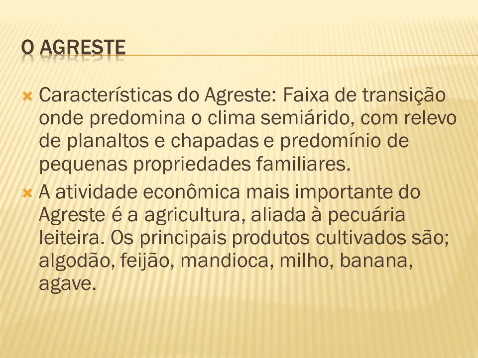 O AGRESTE
