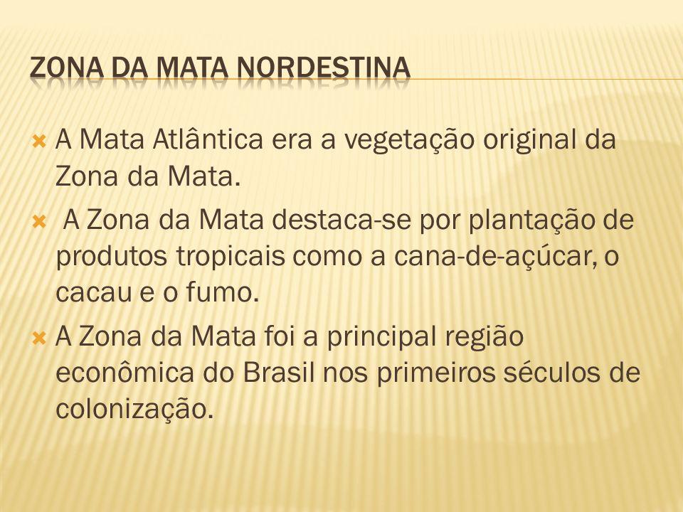 ZONA DA MATA NORDESTINA