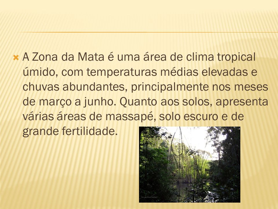 A Zona da Mata é uma área de clima tropical úmido, com temperaturas médias elevadas e chuvas abundantes, principalmente nos meses de março a junho.