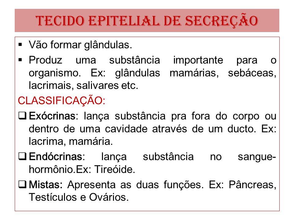 TECIDO EPITELIAL DE SECREÇÃO