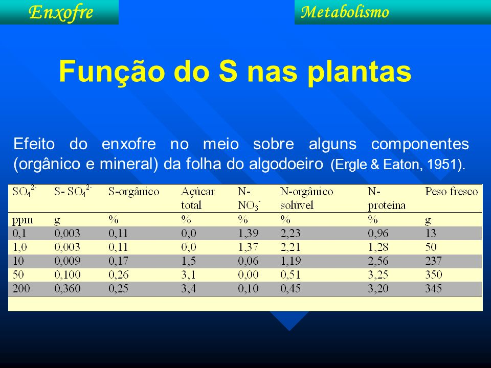 Função do S nas plantas Enxofre Metabolismo