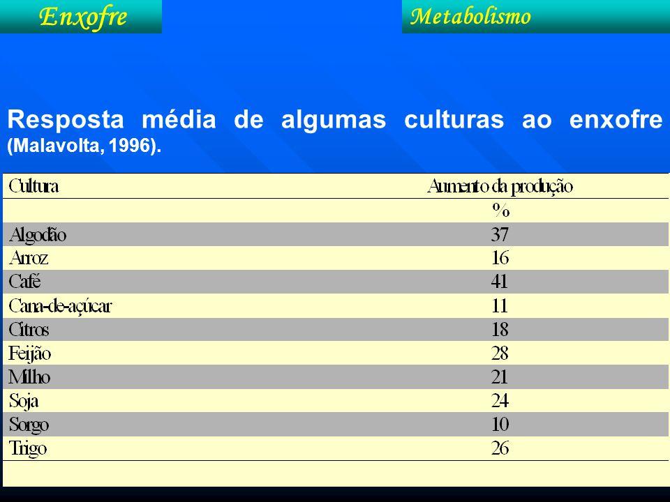 Enxofre Metabolismo Resposta média de algumas culturas ao enxofre (Malavolta, 1996).