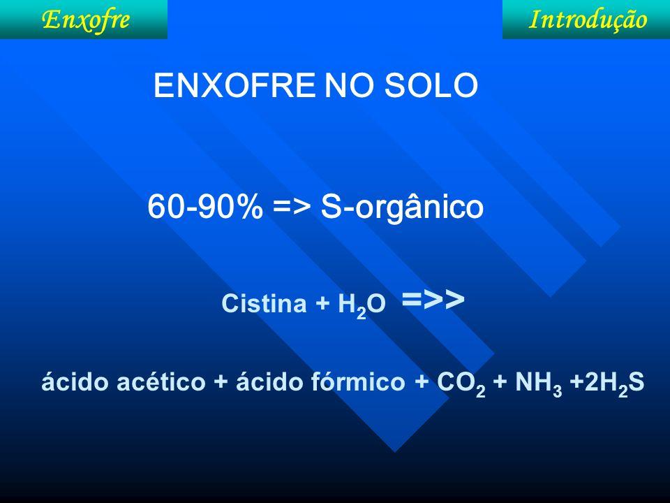 ácido acético + ácido fórmico + CO2 + NH3 +2H2S