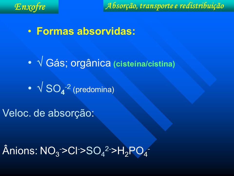 Gás; orgânica (cisteína/cistina)  SO4-2 (predomina)