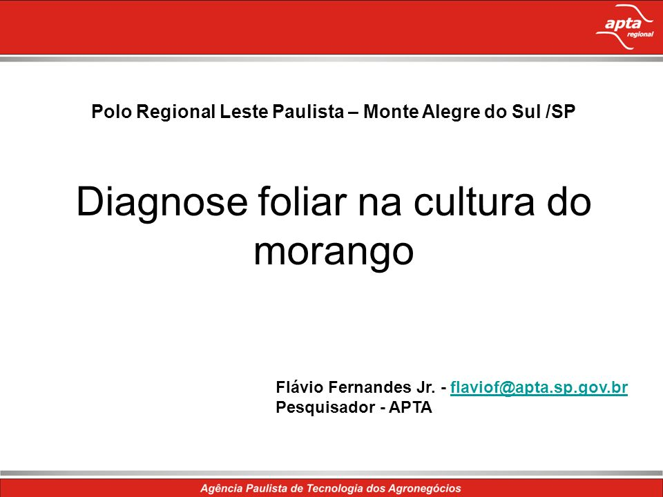 Polo Regional Leste Paulista – Monte Alegre do Sul /SP