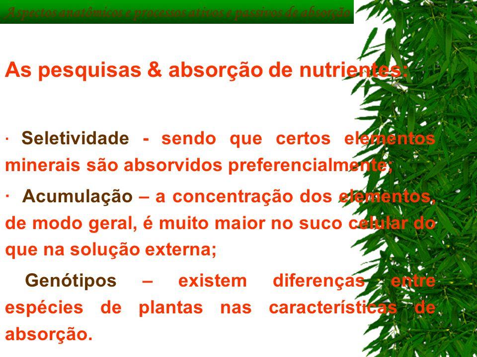 As pesquisas & absorção de nutrientes:
