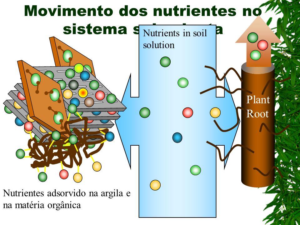 Movimento dos nutrientes no sistema solo-planta