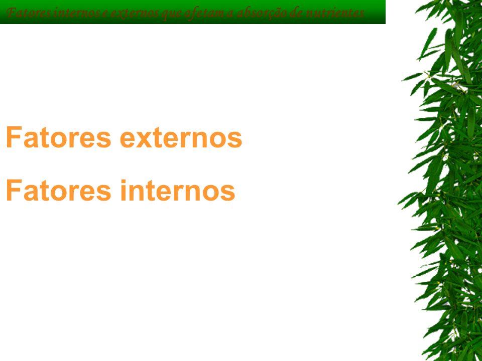 Fatores externos Fatores internos