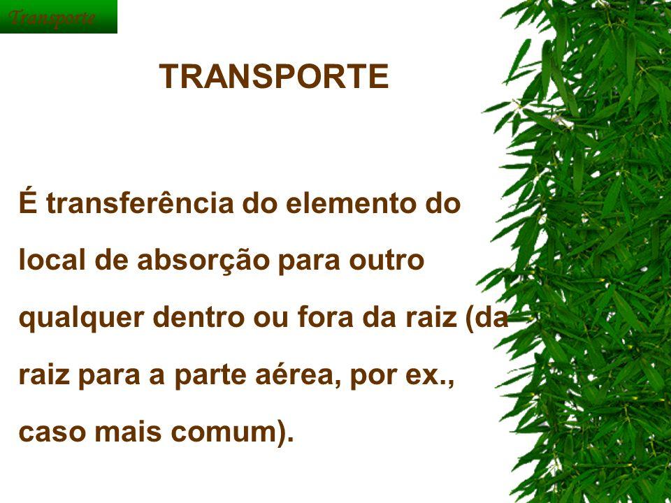 Transporte TRANSPORTE.