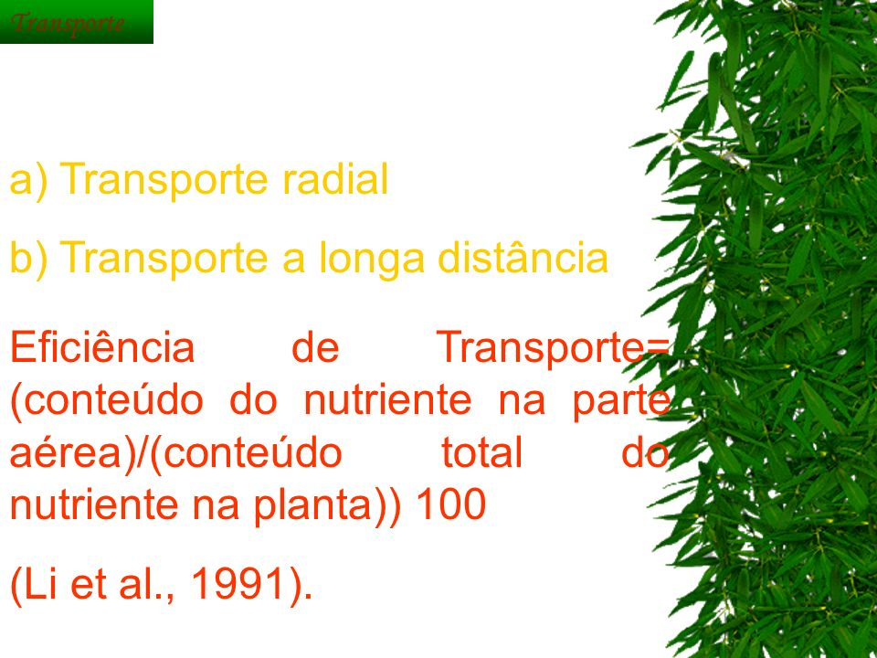 b) Transporte a longa distância